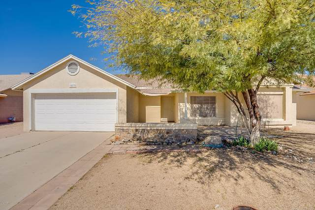 10838 W Morten Avenue, Glendale, AZ 85307 (MLS #6056745) :: Conway Real Estate