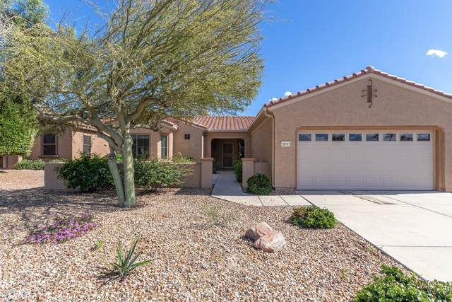 20143 N Cactus Forest Drive, Surprise, AZ 85387 (MLS #6056750) :: Long Realty West Valley