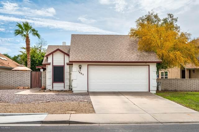 1665 E Juanita Avenue, Mesa, AZ 85204 (MLS #6056764) :: Yost Realty Group at RE/MAX Casa Grande