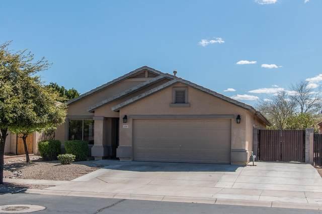 15881 W Moreland Street, Goodyear, AZ 85338 (MLS #6056770) :: The Laughton Team