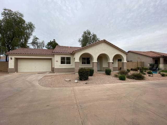 686 E Colt Court, Chandler, AZ 85225 (MLS #6056780) :: Yost Realty Group at RE/MAX Casa Grande