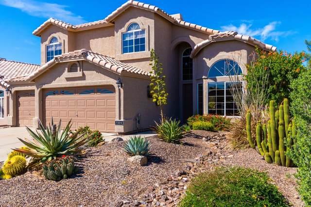 7324 E Sand Hills Road, Scottsdale, AZ 85255 (MLS #6056933) :: My Home Group
