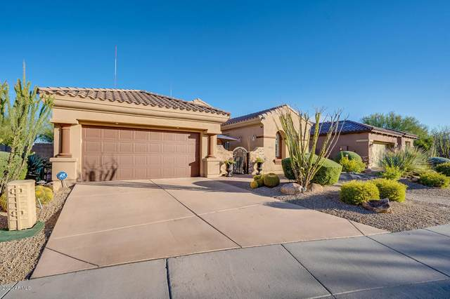 3538 E Robin Lane, Phoenix, AZ 85050 (MLS #6056958) :: Conway Real Estate