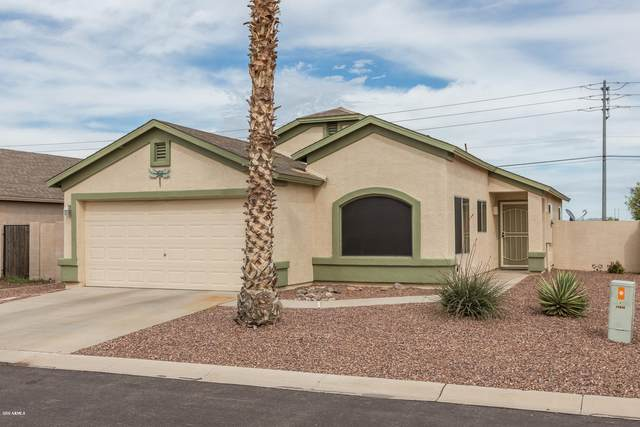 24667 N Lost Dutchman Way, Florence, AZ 85132 (MLS #6056961) :: Kepple Real Estate Group