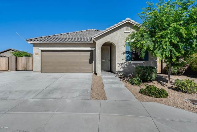 26421 N 120TH Drive, Peoria, AZ 85383 (MLS #6056990) :: Power Realty Group Model Home Center