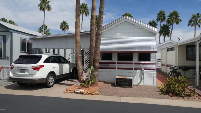 125 S Sioux Drive, Apache Junction, AZ 85119 (MLS #6056993) :: The Kenny Klaus Team