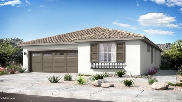 25372 N 143rd Lane, Surprise, AZ 85387 (MLS #6057002) :: Power Realty Group Model Home Center