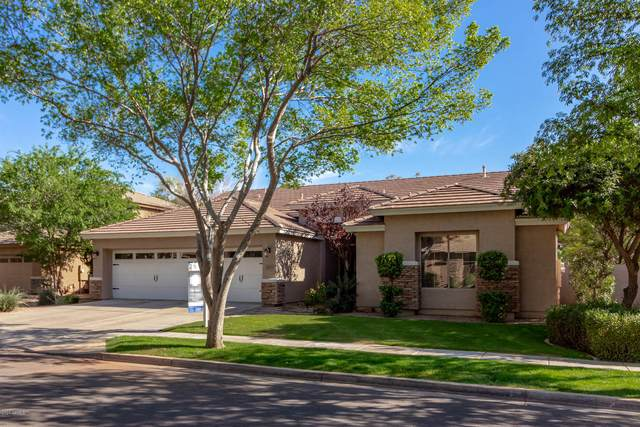 3435 E Vaughn Avenue, Gilbert, AZ 85234 (MLS #6057005) :: Revelation Real Estate