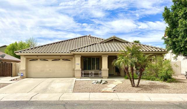 2506 N 112TH Lane, Avondale, AZ 85392 (MLS #6057014) :: Nate Martinez Team