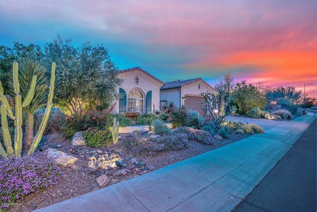 12091 W Morning Vista Drive, Peoria, AZ 85383 (MLS #6057029) :: Howe Realty