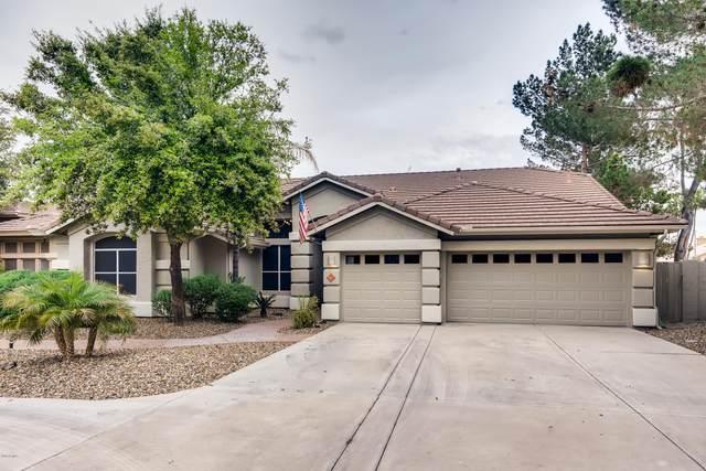 6511 W Via Del Sol Drive, Glendale, AZ 85310 (MLS #6057033) :: The Laughton Team