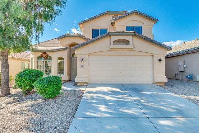 41985 W Anne Lane, Maricopa, AZ 85138 (MLS #6057041) :: Brett Tanner Home Selling Team