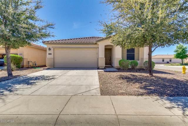 881 E Kelsi Avenue, San Tan Valley, AZ 85140 (MLS #6057058) :: The Laughton Team