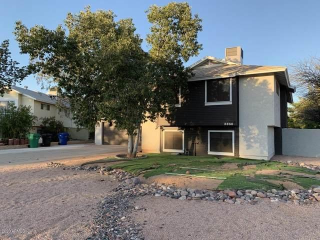 3838 E Dewberry Avenue, Mesa, AZ 85206 (MLS #6057149) :: Revelation Real Estate