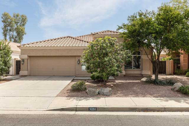 7251 E Lakeview Avenue, Mesa, AZ 85209 (MLS #6057172) :: The Bill and Cindy Flowers Team