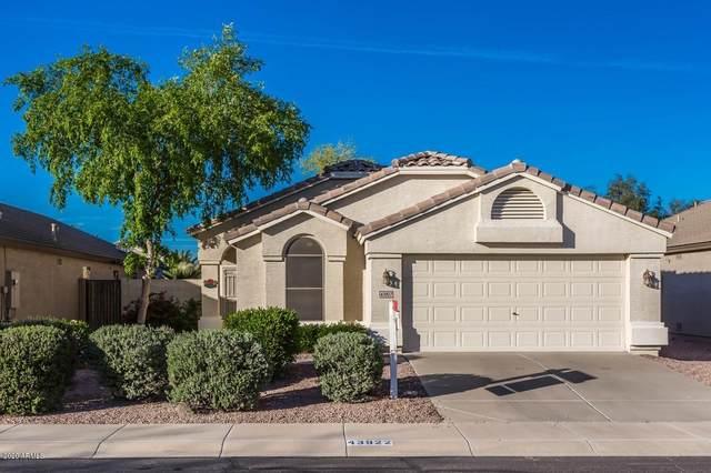 43922 W Carey Drive, Maricopa, AZ 85138 (MLS #6057174) :: Brett Tanner Home Selling Team