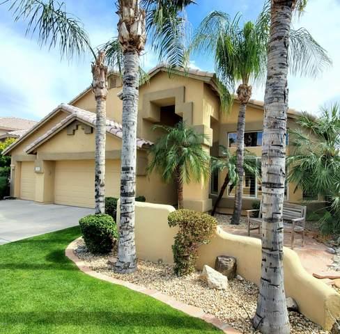 3117 E Muirwood Drive, Phoenix, AZ 85048 (MLS #6057188) :: Yost Realty Group at RE/MAX Casa Grande