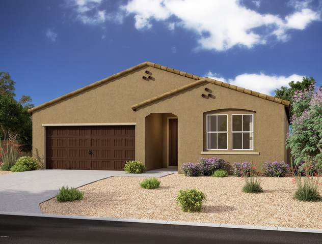 592 W Lowell Drive, San Tan Valley, AZ 85140 (MLS #6057189) :: The Laughton Team