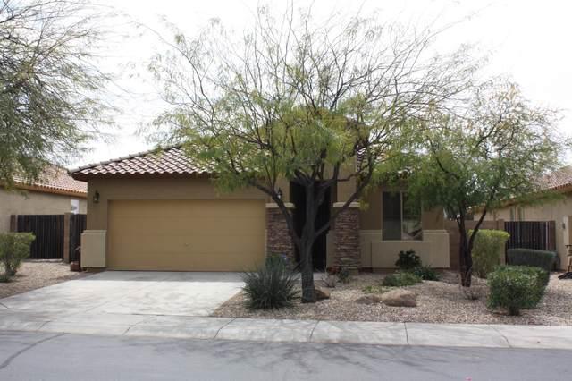 7347 W Red Hawk Drive, Peoria, AZ 85383 (MLS #6057194) :: The Laughton Team
