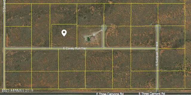 Tbd E Covey Run Trail, Hereford, AZ 85615 (MLS #6057254) :: Devor Real Estate Associates