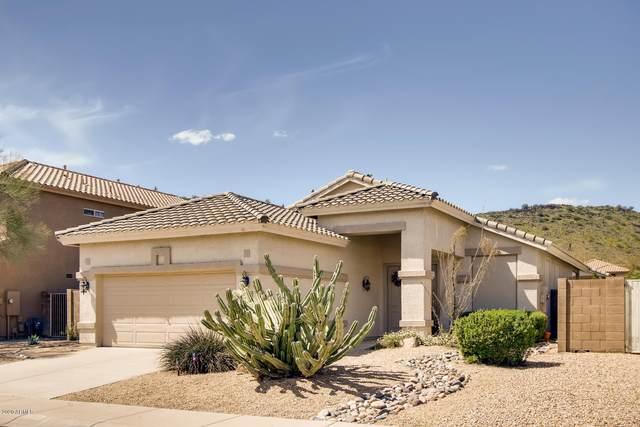23422 N 21ST Place, Phoenix, AZ 85024 (MLS #6057259) :: Brett Tanner Home Selling Team