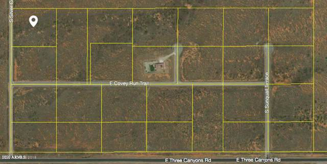 tbd S Silver Concho Way, Hereford, AZ 85615 (MLS #6057264) :: Nate Martinez Team