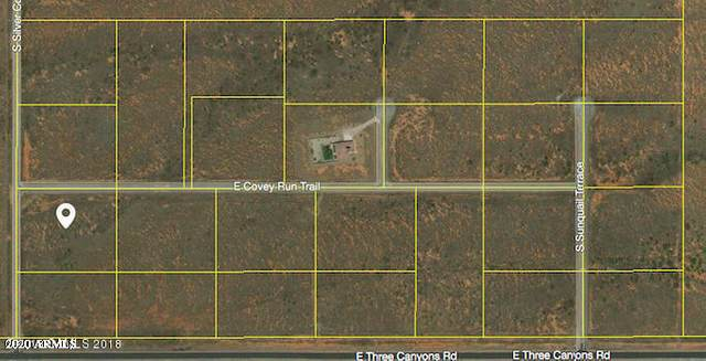 tbd S Silver Concho Way, Hereford, AZ 85615 (MLS #6057266) :: Nate Martinez Team