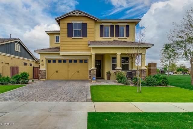 3105 E Pinto Drive, Gilbert, AZ 85296 (MLS #6057268) :: Revelation Real Estate