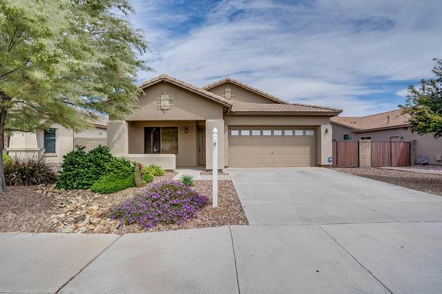 14534 W Hearn Road, Surprise, AZ 85379 (MLS #6057274) :: Brett Tanner Home Selling Team