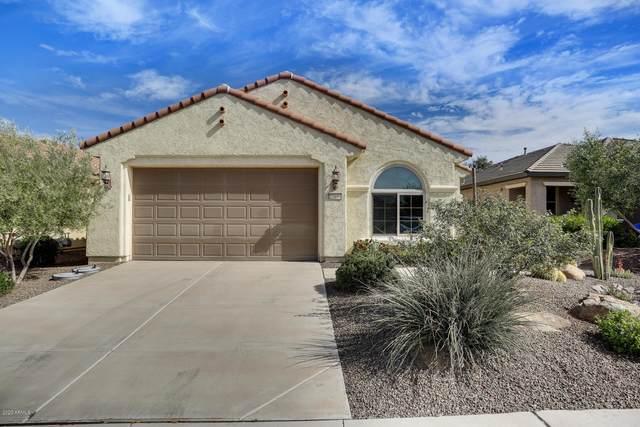 27030 W Escuda Drive, Buckeye, AZ 85396 (MLS #6057275) :: Arizona Home Group