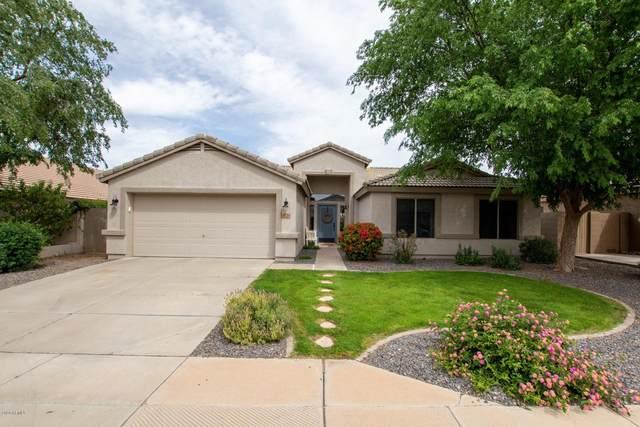 8738 E Posada Avenue, Mesa, AZ 85212 (MLS #6057278) :: Conway Real Estate