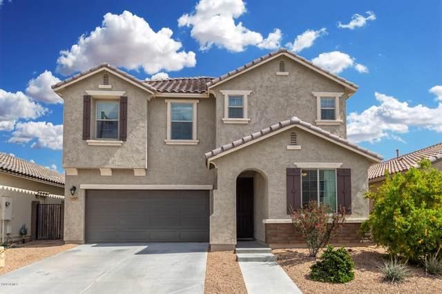12012 W Desert Sun Lane, Peoria, AZ 85383 (MLS #6057306) :: Power Realty Group Model Home Center