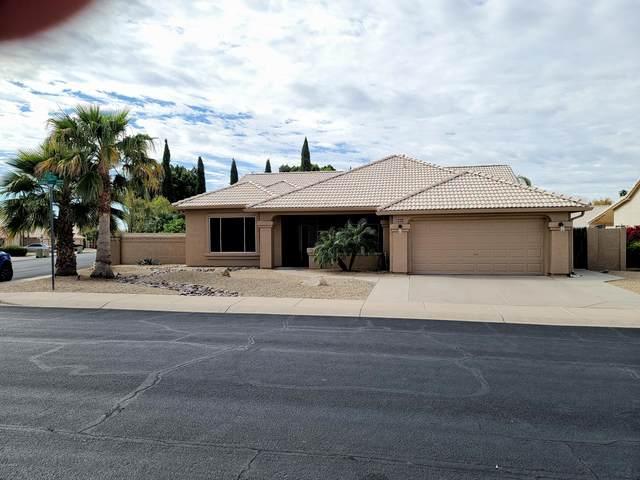 6351 W Quail Avenue, Glendale, AZ 85308 (MLS #6057328) :: The Laughton Team
