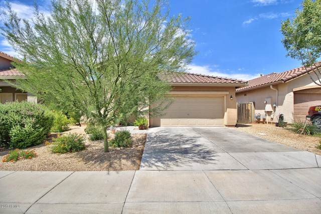 39828 N Messner Way, Anthem, AZ 85086 (MLS #6057335) :: The Daniel Montez Real Estate Group