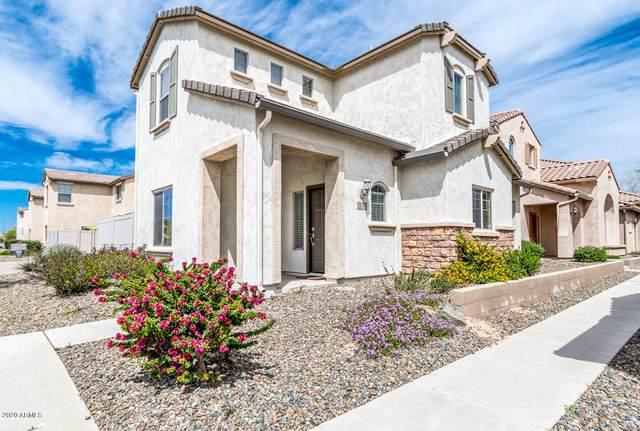 5352 W Molly Lane, Phoenix, AZ 85083 (MLS #6057337) :: The Laughton Team