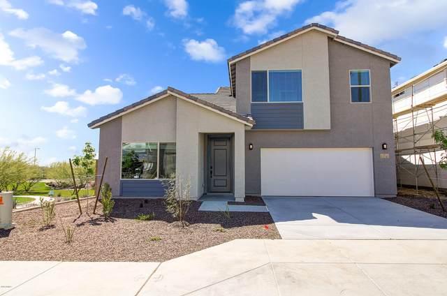 21147 W Holly Street, Buckeye, AZ 85396 (MLS #6057343) :: The Kenny Klaus Team