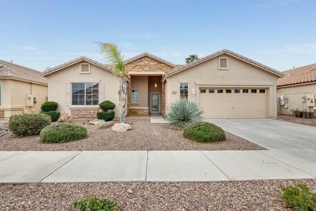 22005 E Camina Plata Place, Queen Creek, AZ 85142 (MLS #6057348) :: Lucido Agency