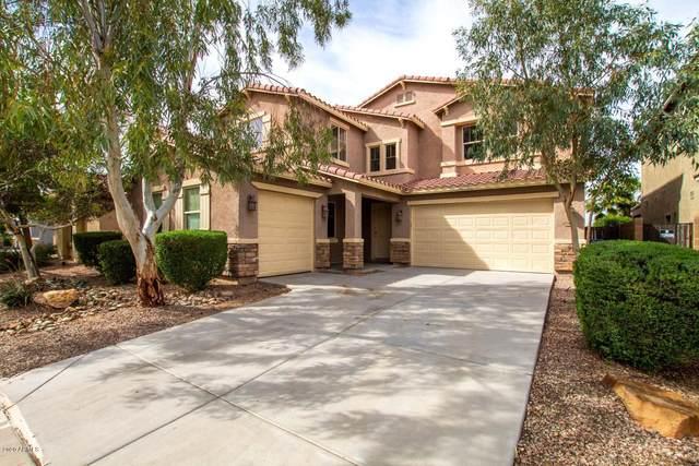 42462 W Avella Drive, Maricopa, AZ 85138 (MLS #6057361) :: Conway Real Estate