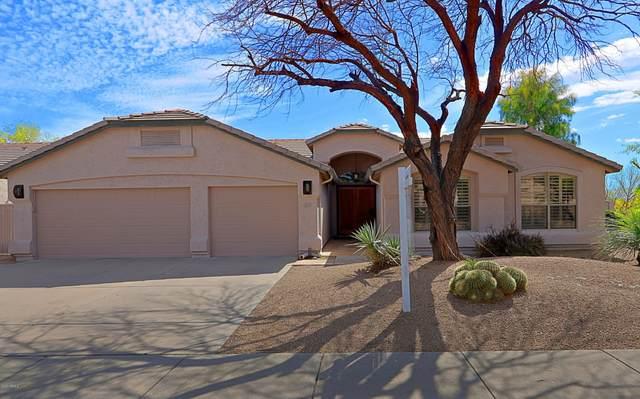 4009 E Robin Lane, Phoenix, AZ 85050 (MLS #6057389) :: Brett Tanner Home Selling Team