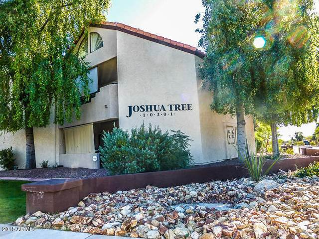 10301 N 70TH Street #124, Paradise Valley, AZ 85253 (MLS #6057400) :: Lucido Agency