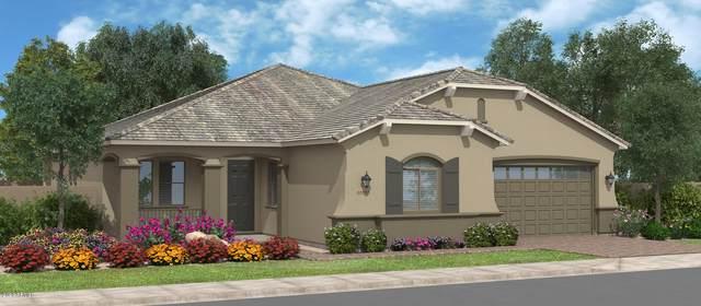 35348 N Brawley Road N, San Tan Valley, AZ 85142 (MLS #6057425) :: The Bill and Cindy Flowers Team
