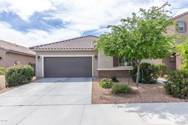 12067 W Tether Trail, Peoria, AZ 85383 (MLS #6057436) :: Power Realty Group Model Home Center