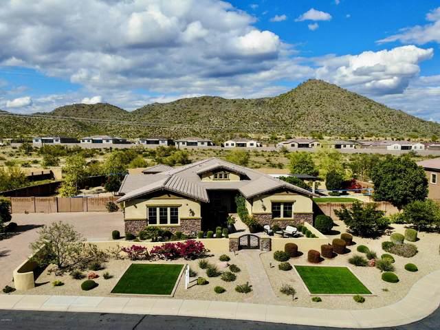 8702 W Questa Drive, Peoria, AZ 85383 (MLS #6057441) :: The W Group