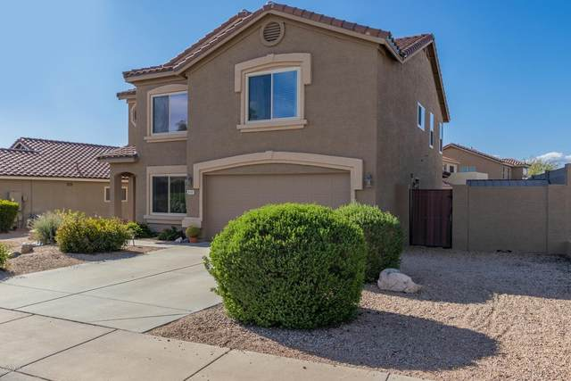5110 E Mark Lane, Cave Creek, AZ 85331 (MLS #6057467) :: The Kenny Klaus Team