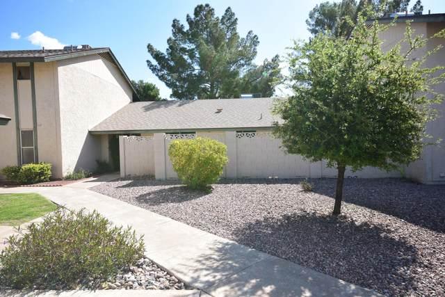 4546 W Continental Drive, Glendale, AZ 85308 (MLS #6057478) :: Nate Martinez Team