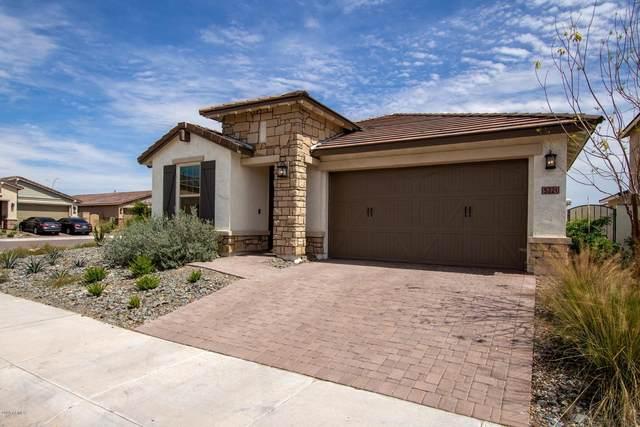 5221 S Cobalt, Mesa, AZ 85212 (MLS #6057507) :: The Laughton Team