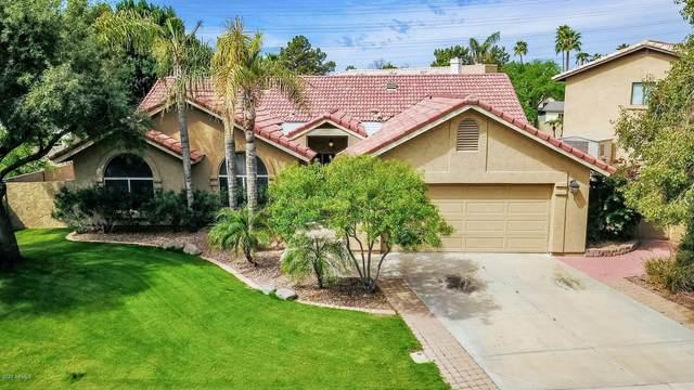 902 N Coronado Drive, Gilbert, AZ 85234 (MLS #6057528) :: Relevate | Phoenix