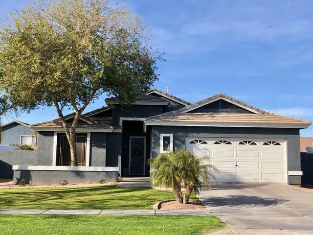 3272 E Cotton Lane, Gilbert, AZ 85234 (MLS #6057548) :: Conway Real Estate