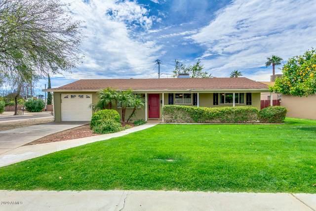 6559 E 2ND Street, Scottsdale, AZ 85251 (MLS #6057555) :: The Laughton Team