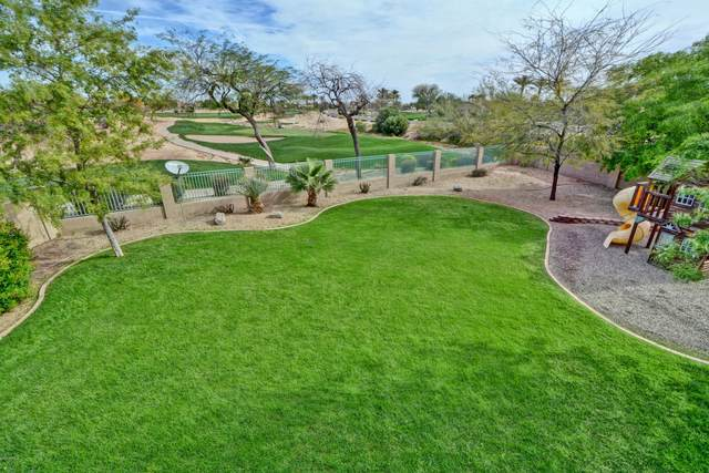 13556 W Desert Flower Drive, Goodyear, AZ 85395 (MLS #6057569) :: Conway Real Estate
